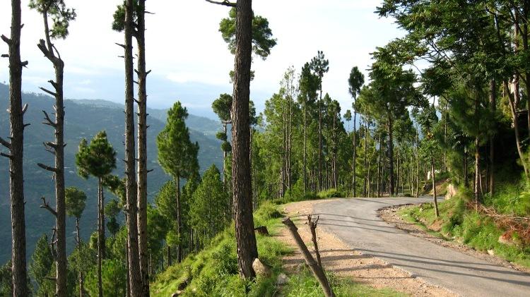 Sudhan Ghali - Chikar Road (AJK, 2006)